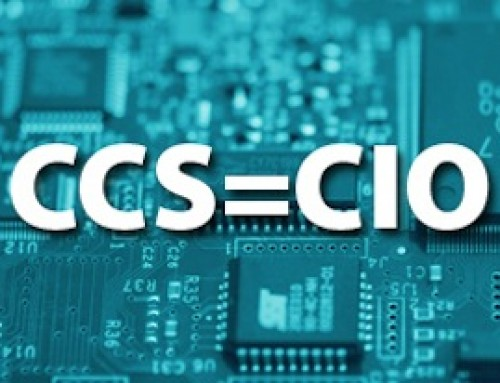 CCS (Central Coast Solutions) can function as your CIO (Chief Information Officer)
